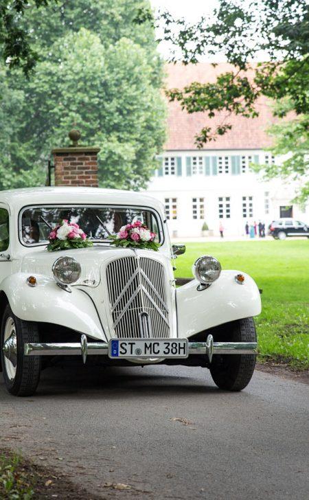 Hochzeit A16